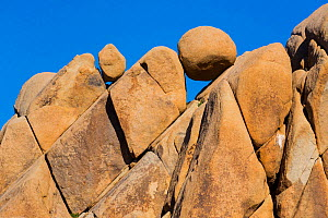 Rock formation know as Giant Marbles, Joshua Tree National Park, California, USA, February 2015.  -  Juan  Carlos Munoz