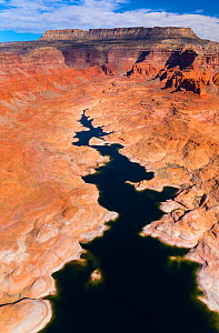 Aerial view of Lake Powell, near Page, Arizona and the Utah border, USA, February 2015. Lake Powell is a reservoir on the Colorado River, and is the second largest man made lake in the USA.  -  Juan  Carlos Munoz