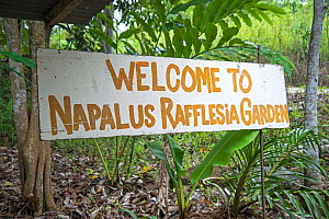 Sign for Rafflesia 'garden', Sabah, Borneo. September 2015.  -  Adrian Davies