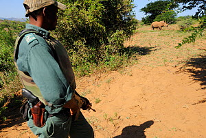 Guard from anti poaching patrol in iMfolozi National Park, South Africa, October 2011.  -  Staffan Widstrand
