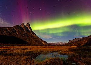 Northern lights / Aurora borealis over the Otertind peaks, Troms, Norway, October 2014. - Espen Bergersen