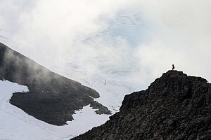Woman silhouetted photographing on Mt Luottotjakka, with the Arjep Luottojekna glacier on the left and the Nuortap Luottojekna glacier on the right, Sarek National Park, World Heritage Laponia, Sweden...  -  Erlend Haarberg