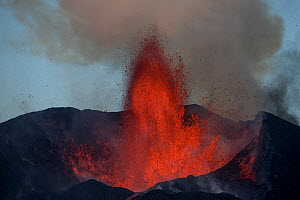 Lava and ash plume erupting from Fogo Volcano, Fogo Island, Cape Verde, 29th November 2014. - Pedro  Narra