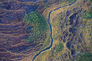 Aerial view of string bogs with Scots pine (Pinus sylvestris) forests, Muddus National Park. Laponia World Heritage Site, Lapland, Sweden, October 2013.  -  Orsolya Haarberg