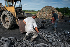 Two charcoal burners sorting charcoal, Transylvania, Romania, June 2015. - Orsolya Haarberg