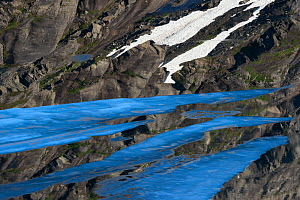 Ice sheets floating on the surface of Ovre Pikhaugvatnet Lake, Saltfjellet-Svartisen National Park, Norway, August 2015.  -  Orsolya Haarberg