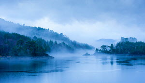 Loch Beinn a Meadhoin in the mist, Inverness, Scotland, December 2013.  -  Niall Benvie