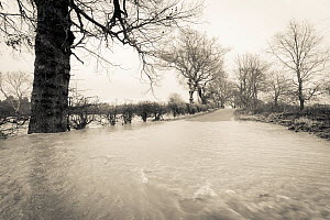 Black and white photo of flooding on the River South Esk, Angus, Scotland, UK, 23rd December 2012  -  Niall Benvie