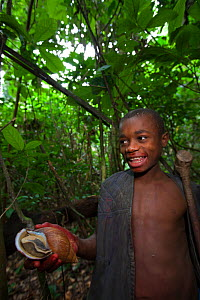 Baka child holding a Giant African land snail (Achatina sp) South East Cameroon, July 2008.  -  Cyril Ruoso
