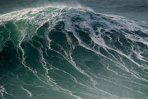 Storm waves off the coast of Praia do Norte, Nazare, Portugal. January. - Luis  Quinta