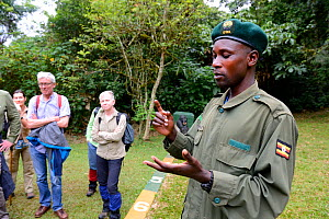 Tourists watching as guide explains the rule to stay at least 7 metres distance from Gorillas, Bwindi Impenetrable Forest, Uganda, February 2016.  -  Eric Baccega