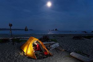 Moon rising over campsite, Toleak Point, Olympic National Park, Washington, USA. August 2015. Model released.  -  Kirkendall-Spring