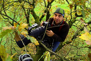 Nature photographer Solvin Zankl taking photographs in an old Oak. Belau, Germany - Solvin Zankl