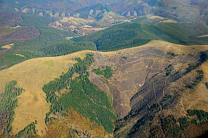Aerial view of deforestation in the Sureanu Mountains.  Carpathians, Romania. October, 2014.  -  Zoltan Nagy