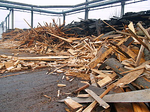 Discarded wood at an inefficient wood processing plant in Reghin, Eastern Carpathians, Romania.  -  Zoltan Nagy