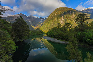 Arthur River on the Milford Track, Fiordland National Park, Southland District, South Island, New Zealand. November.  -  Andy Trowbridge