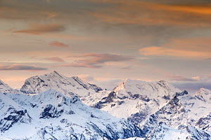 Winter landscape with view towards the high Swiss Alps at sunset. Bernese Alps, Switzerland, November 2014  -  David  Pattyn