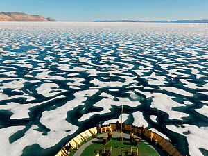 Broken one year ice off the coast of Ellesmere Island, seen from prow of boat, Nunavut, Canada, August 2007.  -  Pal Hermansen