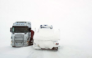 Lorries driving in extreme snow conditions, Batsfjordfjellet, Finnmark, Norway, March 2014.  -  Pal Hermansen