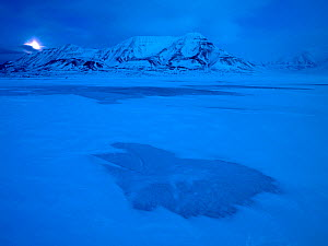 First light in Svalbard with moon low against mountains, Norway, February. - Pal Hermansen