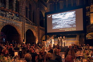 Wildlife Photographer of the Year Award winner Michael 'Nick' Nichols, receiving his award from Sir David Attenborough at the 50th Anniversary awards ceremony, Natural History Museum, London. 21 Octob...  -  Pal Hermansen