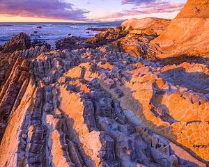 Sunset over coast of Montana de Oro State Park in California, USA December. - Floris  van Breugel
