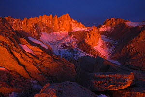 Morning light illuminates Mount Whitney, seen from Thor Peak, Sierra Nevada, California, USA, March  -  Floris  van Breugel