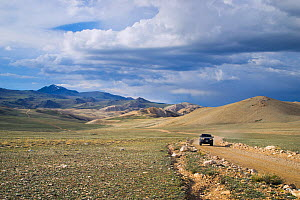 Driving the remote dirt roads, 11000ft altitude, White Mountains, California, USA, June - Floris  van Breugel