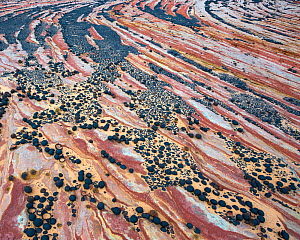 Moqui Marbles adorn a sandstone plateau in Escalante National Monument, Utah, USA, October - Floris  van Breugel