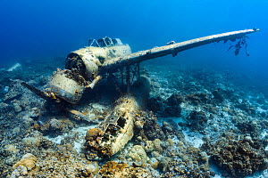 "The wreck of a Japanese Second World War Aichi E13A-1 ""Jake"" seaplane. Korror, Rock Islands, Palau, Micronesia. Tropical west Pacific Ocean.  -  Alex Mustard"