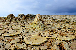 Formations caused by wind erosion, salt deposits, water and sulfurous vapors in Dallol area of Lake Assale. Danakil Depression, Afar Region, Ethiopia, Africa. November 2014.  -  Enrique Lopez-Tapia