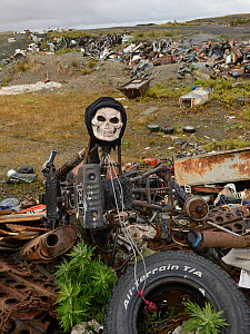Halloween skull mask on tip with old car parts, Sewards Peninsula, Nome, Alaska, USA, September 2015.  -  Loic  Poidevin