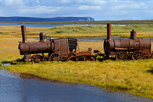 Old rusted steam trains, Sewards Peninsula, Nome, Alaska, USA, September 2015.  -  Loic  Poidevin