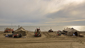 Gold dredgers and tents on beach, Sewards Peninsula, Nome, Alaska, USA, September.  -  Loic  Poidevin