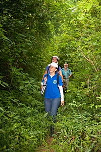 Anne Savage, Rosamira Guillen and Project / Proyecto Titi team walking through tropical dry forest, looking for Cotton-top tamarins (Saguinus oedipus) El Ceibal, Colombia. July 2008. Critically endang...  -  Lisa  Hoffner