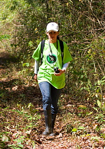 Rosamra Guillen, director of Project / Proyecto Titi, walking through tropical dry forest to look for Cotton top tamarins (Saguinus oedipus)  Colombia, February 2008. Critically endangered species.  -  Lisa  Hoffner
