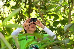 Rosamra Guillen, director of  Project / Proyecto Titi looking for Cotton top tamarins (Saguinus oedipus) in tropical dry forest, Colombia Critically endangered species.  -  Lisa  Hoffner