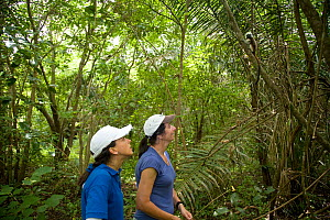 Anne Savage,  Rosamira Guillen, directors of Project / Proyecto Titi in tropical dry forest, looking for Cotton-top tamarins (Saguinus oedipus) El Ceibal, Colombia. July 2008. Critically endangered sp...  -  Lisa  Hoffner