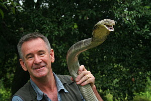 Presenter Nigel Marven holding King cobra (Ophiophagus hannah) China, May 2013. Model released.  -  Michael Hutchinson