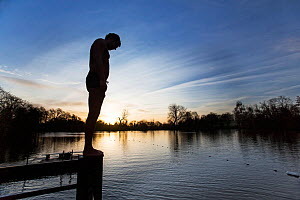 Swimmer about to dive into the cold water of the Men's Pond, Hampstead Heath, London, England, UK. January 2016.  -  Matthew Maran