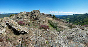 Corniche des Cevennes, trail along the Cevennes Mountains, Languedoc, France. September. - Jean E. Roche
