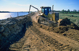 Reinforcement of dykes along the Rhone River after severe flooding in 2003. Camargue, France 2003.  -  Jean E. Roche