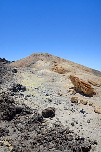 Fumarole field near the summit of Mount Teide volcano, with lava rock and pumic deposits stained yellow by sulphurous gas emissions, Tenerife, May. - Nick Upton