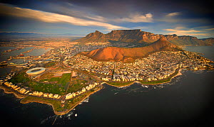 Aerial view of Cape Town city with Table Mountain, South Africa, taken from helicopter, May 2011 - Wim van den Heever
