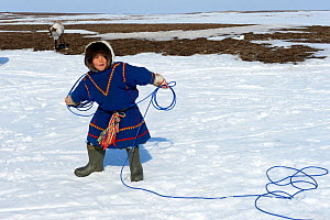 Young boy, Nenet herder practising lasso, wearing traditional malitsa coat. Yar-Sale district, Yamal, Northwest Siberia, Russia. April 2016.  -  Eric Baccega