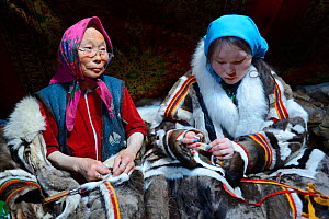 Two generations of Nenet women, an older woman and teeage girl, sewing and wearing traditional coat made with reindeer skin. Yar-Sale district, Yamal, Northwest Siberia, Russia. April 2016. - Eric Baccega