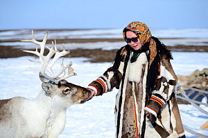 Carolina Serotetto, Nenet teenager dressed in traditional winter coat made of reindeer skin with  pet ^^akva^^ Reindeer (Rangifer tarandus). Yar-Sale district, Yamal, Northwest Siberia, Russia. April... - Eric Baccega