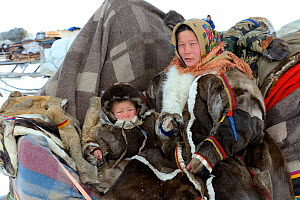 Nenet herder on sled with young boy during spring migration wearing traditional coat made with reindeer skin. Yar-Sale district. Yamal, Northwest Siberia, Russia. April 2016.  -  Eric Baccega