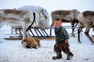 Young Nenet boy at camp wearing traditional winter boots made with reindeer skin. Reindeer (Rangifer tarandus) and sled in background. Yar-Sale district. Yamal, Northwest Siberia, Russia. April  2016.  -  Eric Baccega