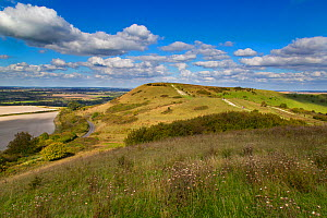 The Ridgeway long distance path and Chiltern Downland from Ivinghoe Hills, Buckinghamshire, England, UK, September.  -  Ernie  Janes